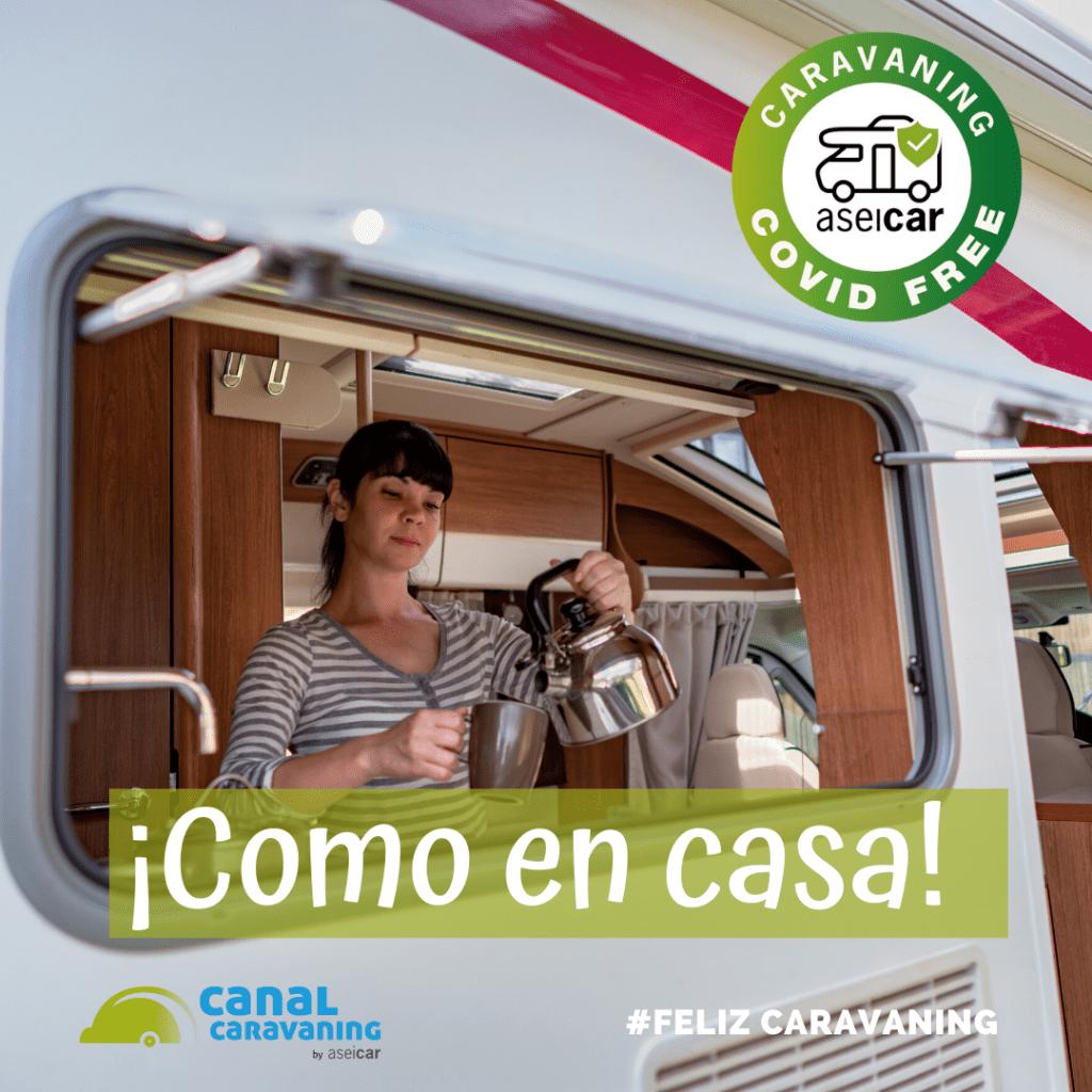 viaja seguro covid free